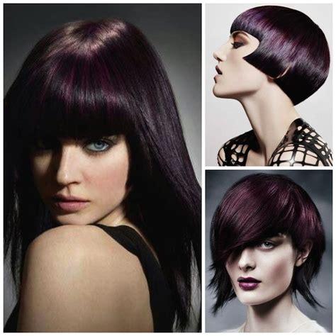 aubergine hair color best 25 eggplant hair colors ideas on