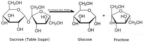what s the chemistry of sugar chemical reactions and
