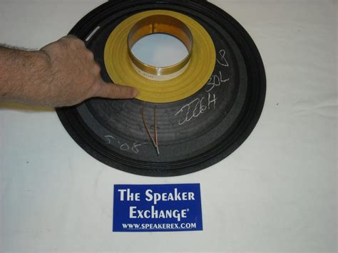 Speaker Subwoofer Black Spider how to identify parts of a speaker speaker exchange