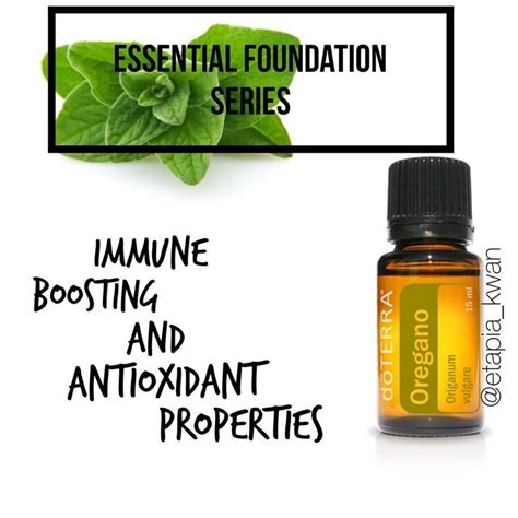 Doterra Oregano Detox by 50 Best Images About Essential Oils On Doterra