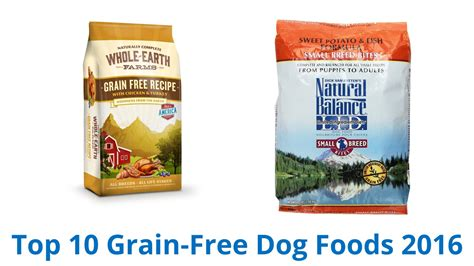 best food grain free best grain free cat food 28 images 10 best grain free foods 2016