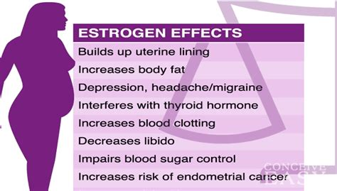 Has Trouble Detoxing Estrogen Endometriosis by 10 Signs You Much Estrogen And How To Lower It
