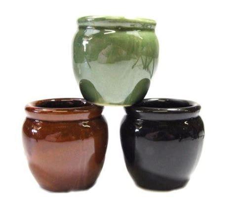 Lucky Bamboo Vases Pots by Lucky Bamboo Pot Ebay