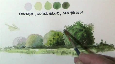 how to paint how to paint trees bushes in watercolor lessons by