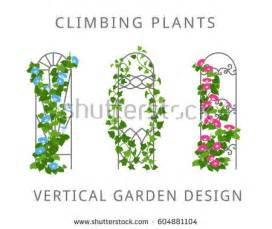 Japanese Garden Trellis Trellis Stock Images Royalty Free Images Amp Vectors