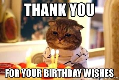 Thank You Birthday Meme - thank you for your birthday wishes birthday cat meme