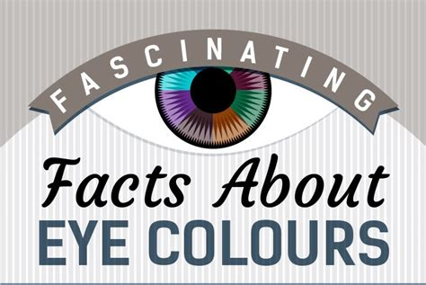 facts about eye color fascinating facts about eye colors society
