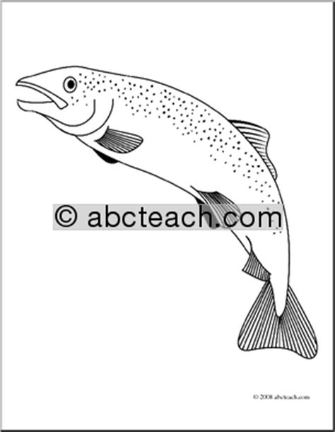 freshwater fish coloring pages clip art freshwater fish trout coloring page abcteach
