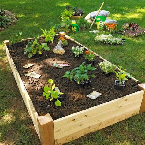 Raised Beds For Vegetable Garden 17 Best Images About Gardening On Raised Beds