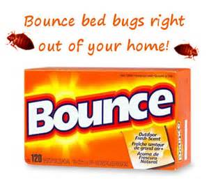 bed bugs and dryer sheets bye bye bed bugs