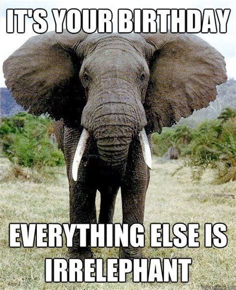 Elephant Meme - the 25 best birthday wishes quotes on pinterest happy