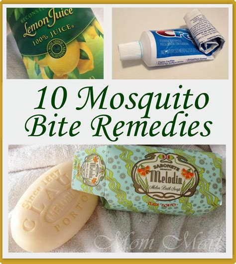 home remedy itch relief for mosquito bites