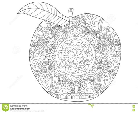 apple coloring pages for adults apple fruit coloring vector for adults stock vector