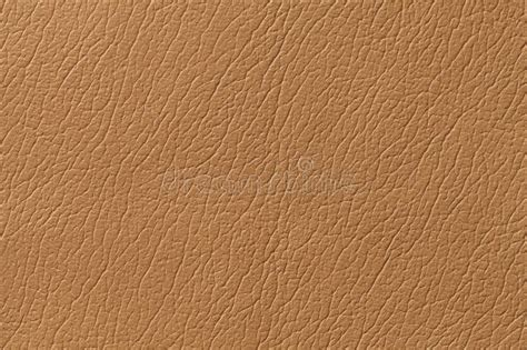 light leather light brown leather texture pixshark com images