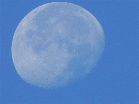 lunar hair growth 2014 look to the moon healthy hair faster growth vangaleens
