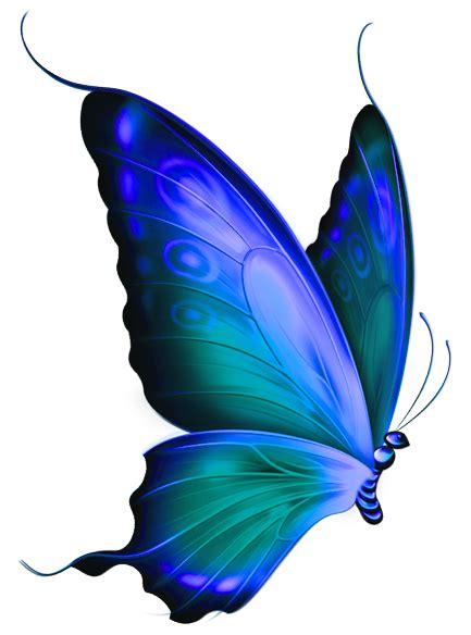 blue butterflies images clipart best