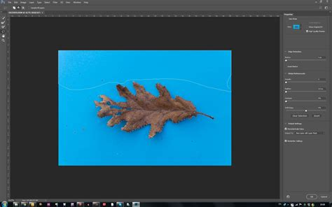 reset lasso tool photoshop cc 2017 why is lasso tool cropping image when