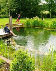 clean backyard pond 1000 ideas about natural backyard pools on pinterest