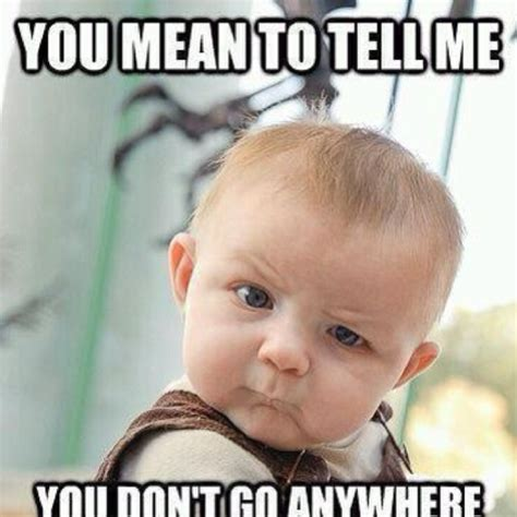 Are You Stupid Meme - stupid baby tickles the funny bone pinterest