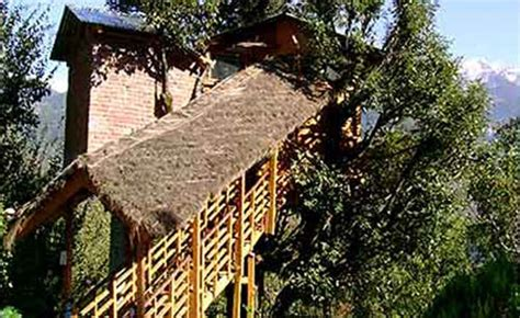 tree house cottage top 5 best tree house hotels in india budget tree house