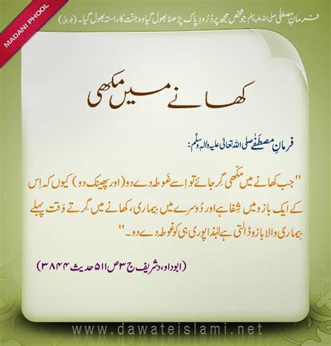 hazrat muhammad saw ki zindagi urdu hazrat muhammad s a w ki ahadith habib ur rehman holy
