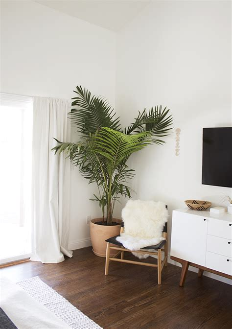 best living room plants our bedroom before and after corner plants and large