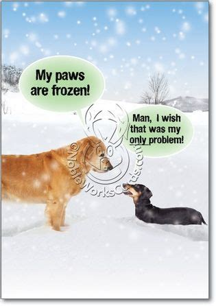 freezing cold cartoon  paws  frozen unique funny merry christmas card nobleworks