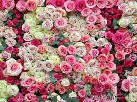 composizioni di fiori natalizi composizioni floreali natalizie zv26 187 regardsdefemmes