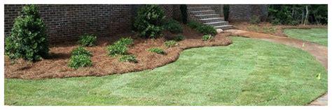 landscaping peachtree city ga landscaping companies in senoia peachtree city mcdonough south atlanta suburbs and central ga