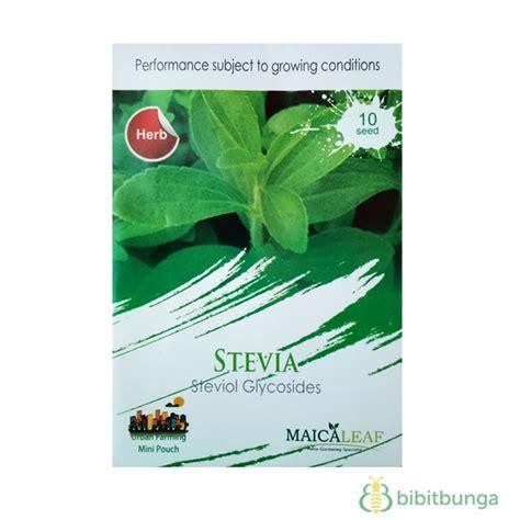 Benih Stevia benih maica leaf stevia 10 biji jual tanaman hias