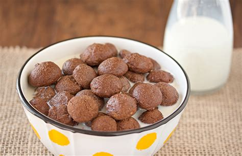 protein powder recipes 21 best protein powder recipes for chocolate