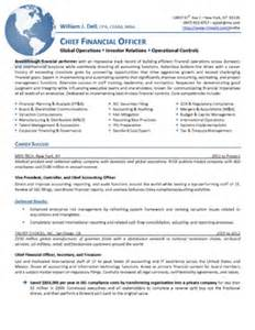 Sle Executive Resume Competencies Sles Executive Resumes Professional Cvs Career