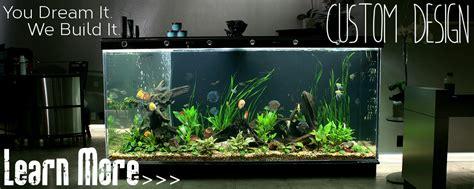 aquarium design los angeles underwater depot retail custom aquarium design aquarium