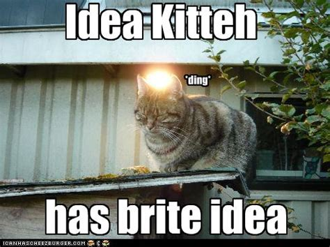 Funny Meme Ideas - crowdfunding and i as told with cats fad magazine