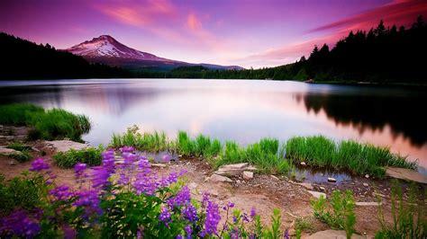 beautiful nature images beautiful nature walpaper zllox