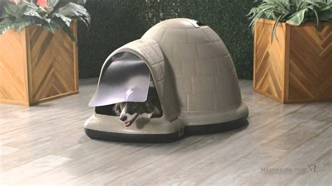 indigo igloo dog house large petmate indigo dog house pad product review video youtube