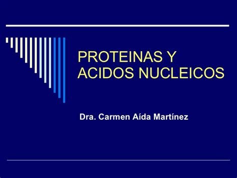 proteinas y acidos nucleicos proteinas y acidos nucleicos 08