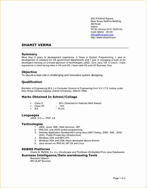 professional resume format doc file 5 cv templates doc free sles exles