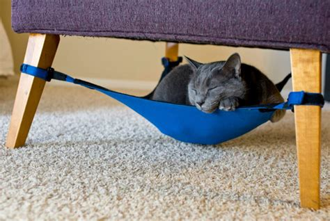 embrace the lazy get your a cat hammock things