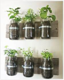 How To Make Your Own Indoor Herb Garden Transformed Hanging Herb Garden Camille Styles