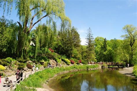 Toronto Botanical Garden Wonderful Scenery Dictionary Words Are Not Able To Express Picture Of Toronto Botanical