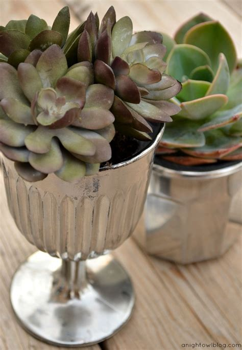 glass succulent planter diy mercury glass succulent planters a owl