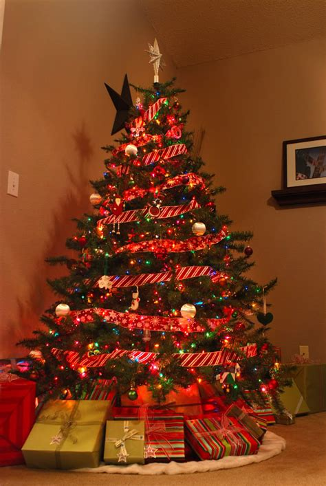 who has the biggest indoor christmas tree indoor tree festival collections