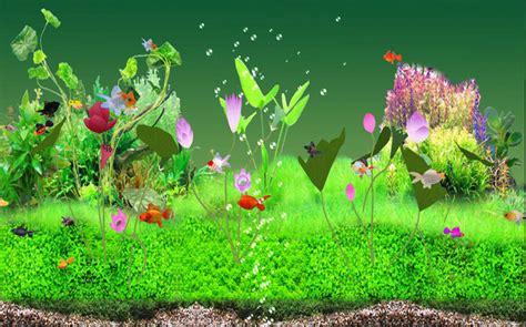 goldfish themes for windows 7 digital goldfish screensaver download