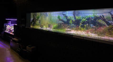 planted aquarium led lighting aquarium led lighting photos best reef aquarium led
