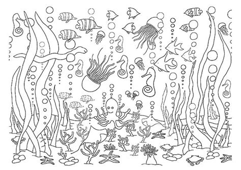 underwater fish coloring pages www imgkid com the