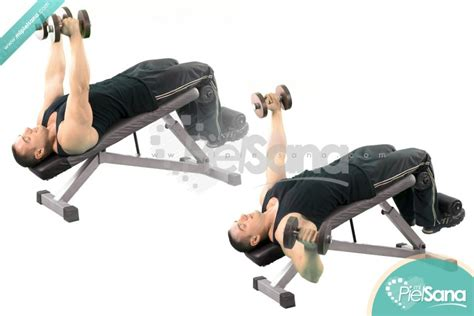 decline bench fly decline bench fly 28 images dumbbell decline fly