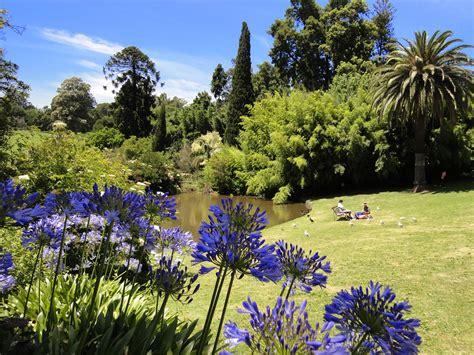 Botanic Gardens Melbourne Fresh Daily Royal Botanic Gardens