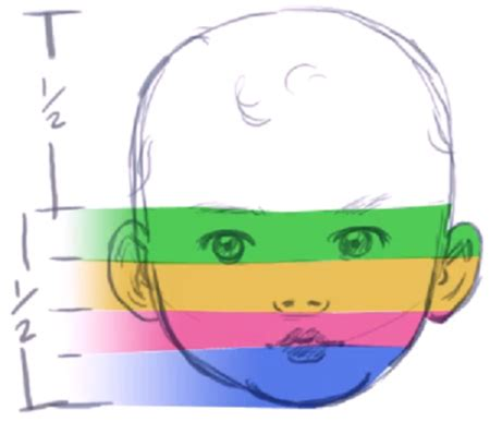 draw nose illustrator how to draw a baby s face head with step by step drawing