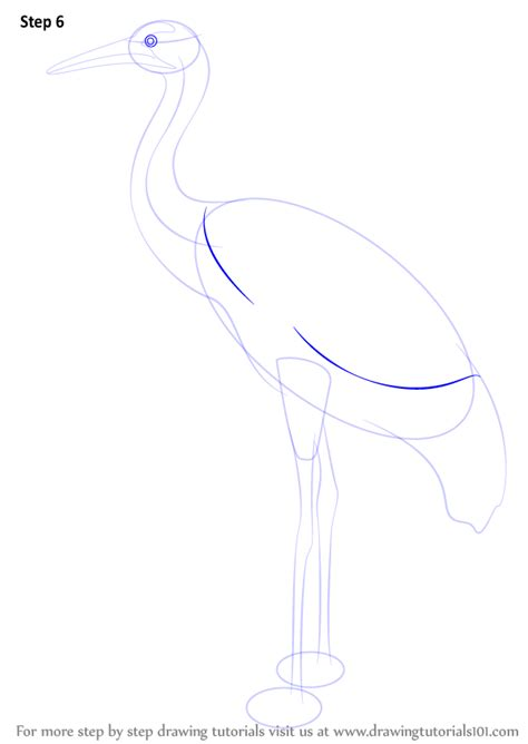 Drawing 6 6 Draw by Learn How To Draw A Crane Birds Step By Step Drawing